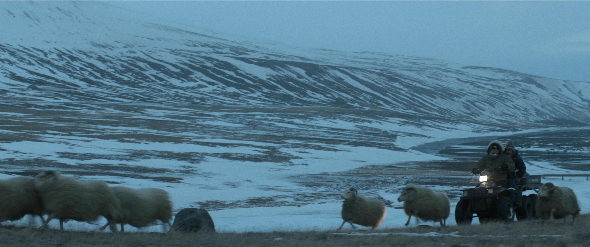RAMS_06_TęNetop_Films_2015_PhotoTę_Sturla_Brandth_Gr+Şvlen