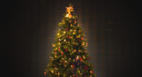 SNOWMAN_6_tree_web